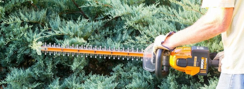 WORX hedge trimmer