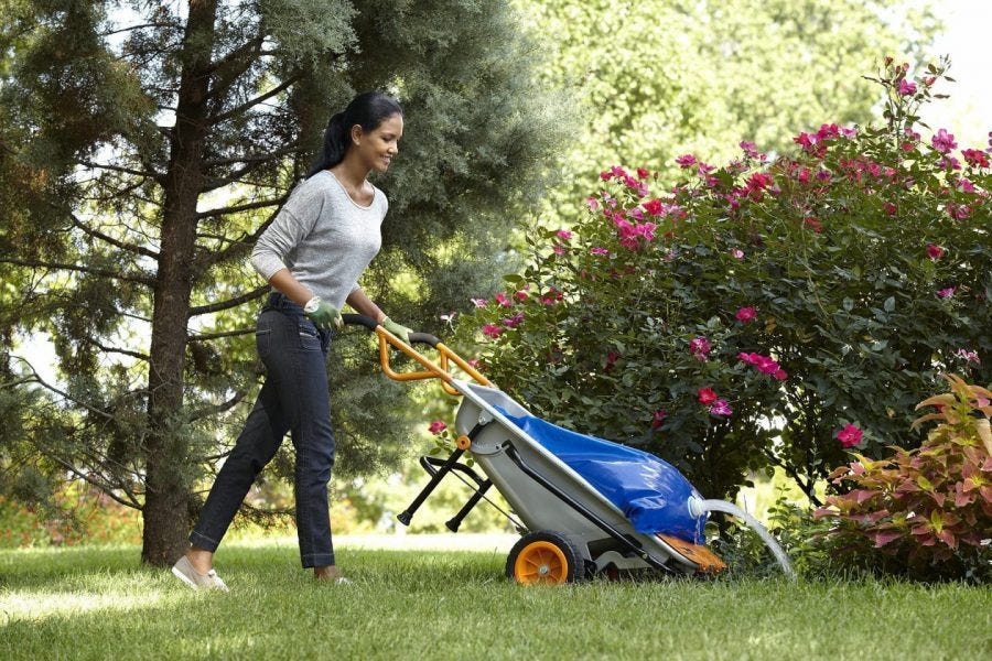 grass edge trimmer
