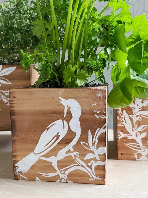 wooden box for growing herbs with a white bird embossed on the side