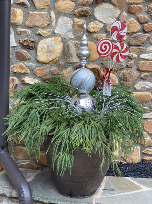 holiday topiaries on plant in front of stone wall