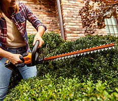 WORX Hedge Trimmers and Clippers Category